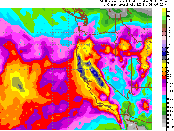 Euro precip through 3/6